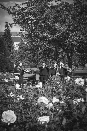 Birdsong Strings Cardiff Wedding Quartet6