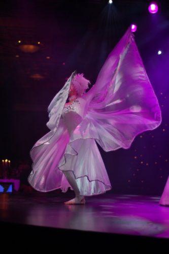 Diamond Dancers Ballerinas9