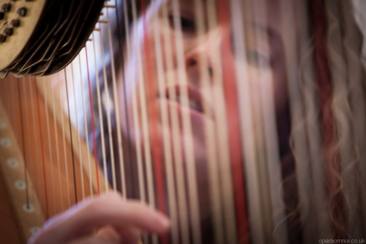 Elizabeth Harpist London Wedding1