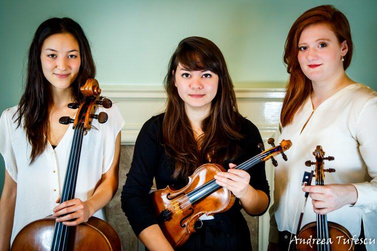 Onyx String Trio Quartet