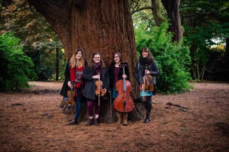 The Mulberry String Quartet 1