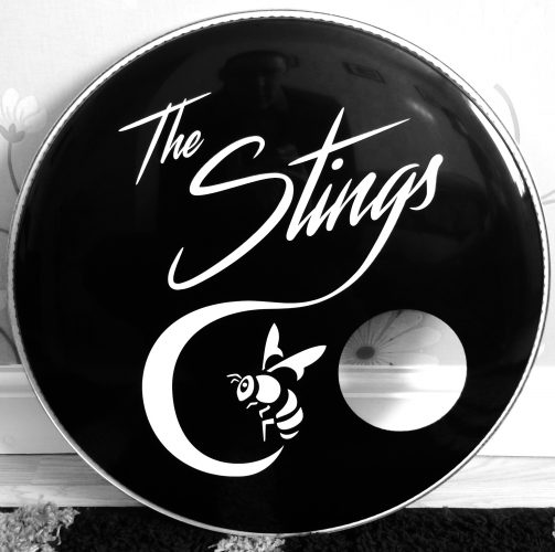 The Stings Band 1