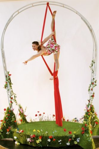 Twisted Acrobats Aerial2