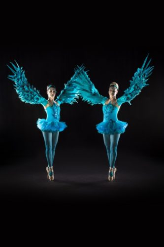 Wing To Wing Ballerinas Dancers4