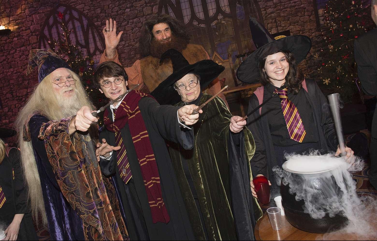 Harry Potter Lookalikes MAIN