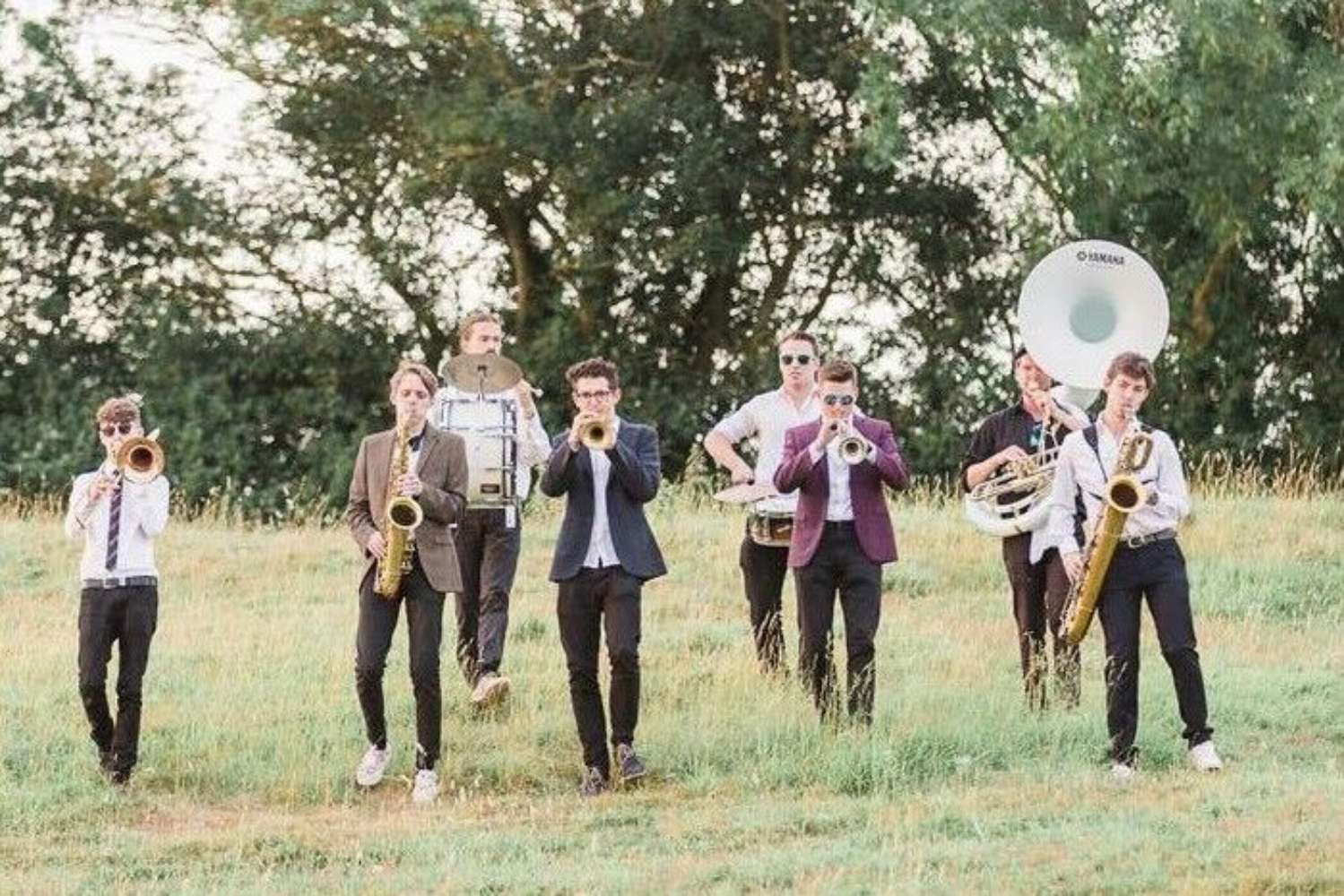 The Brass Animals Main