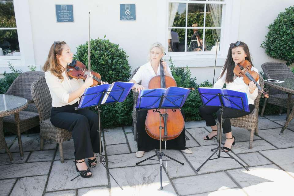 The Singing String Quartet London String Quartet For Hire1
