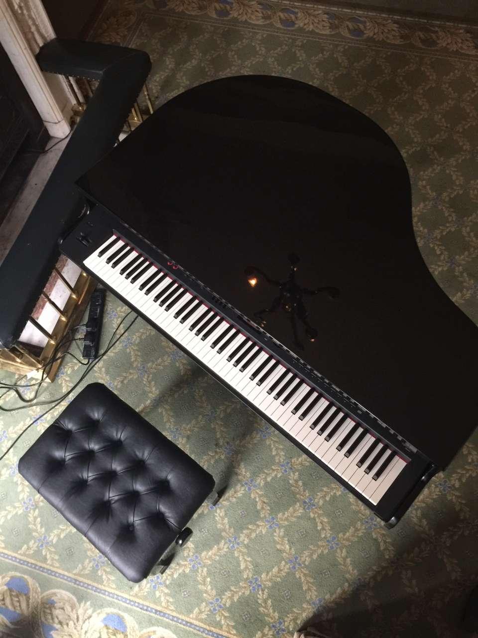 Ricardo London Pianist For Hire Wedding 9