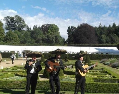 The mariachi warriors gallery 3
